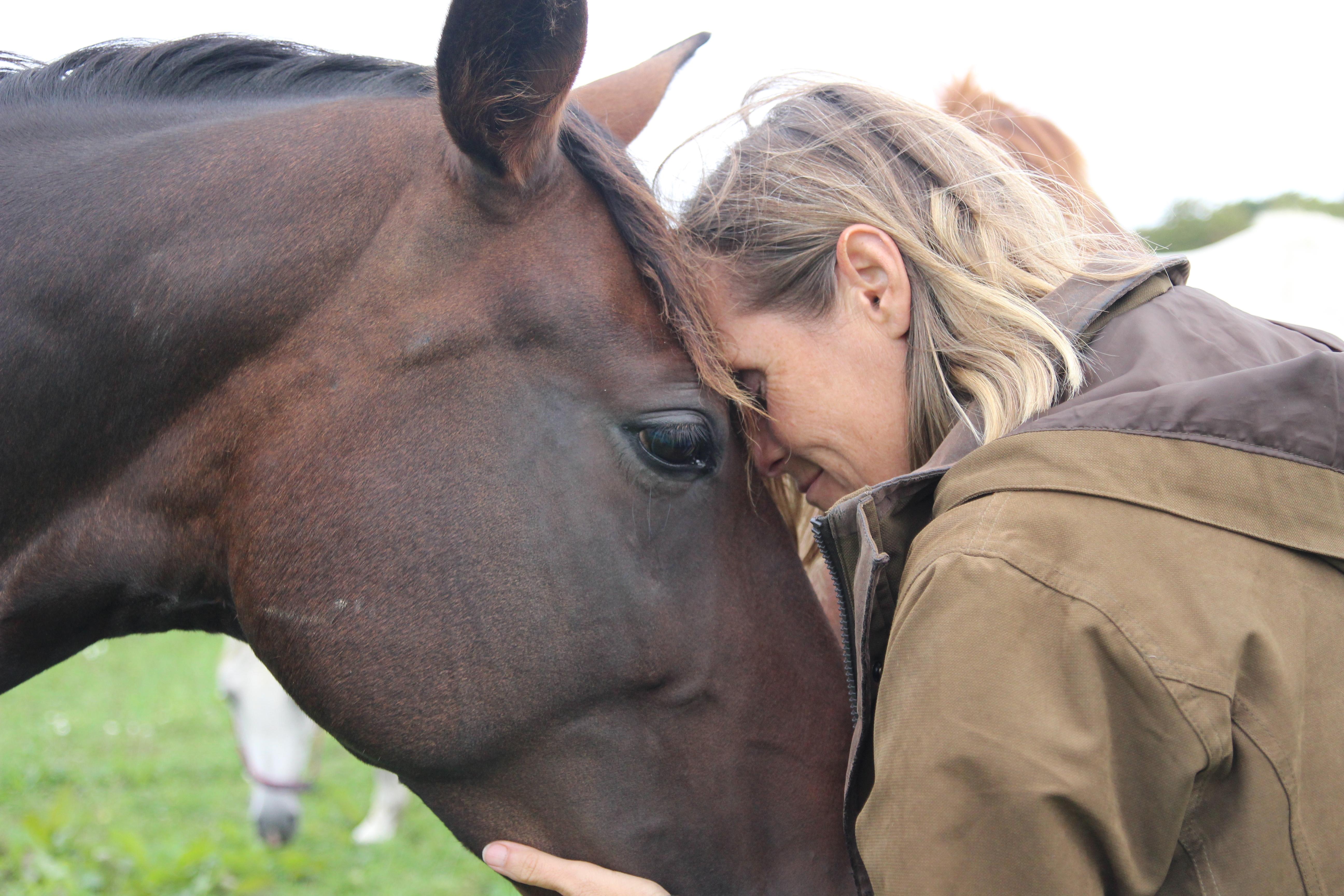 www.equimind.co.uk - horsemanship online competition