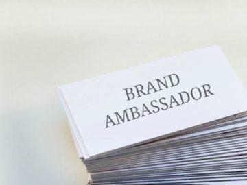 Rider & Handler Ambassador Opportunity